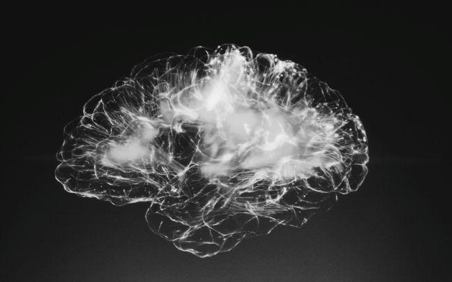 Czy osobowość mieści się w mózgu?